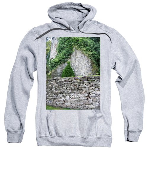 Sweatshirt featuring the photograph The Topper by Denise Railey