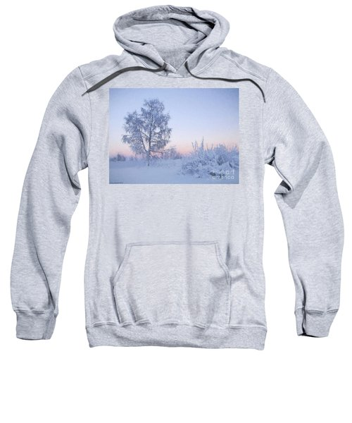 The Winter Light Sweatshirt