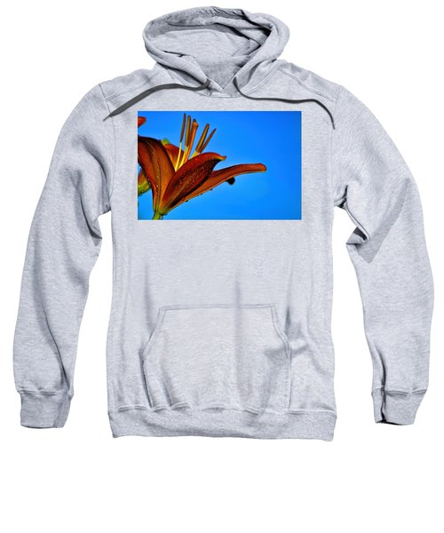 Thirsty Lily In Hdr Art  Sweatshirt