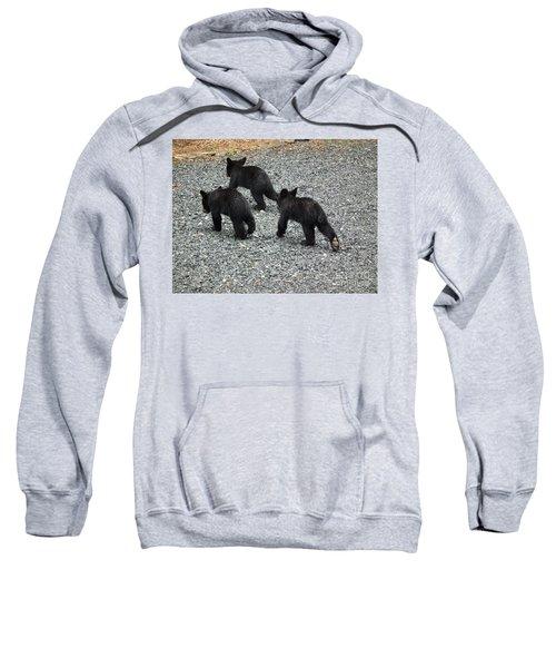 Three Little Bears In Step Sweatshirt