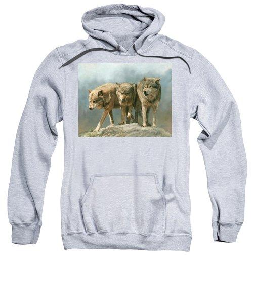 Three Wolves Sweatshirt