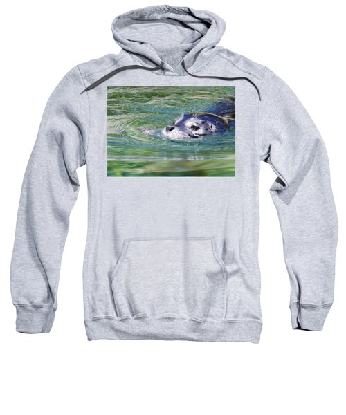 Time For A Swim Sweatshirt
