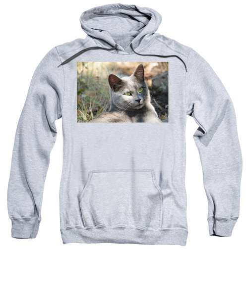 Tom Cat Sweatshirt