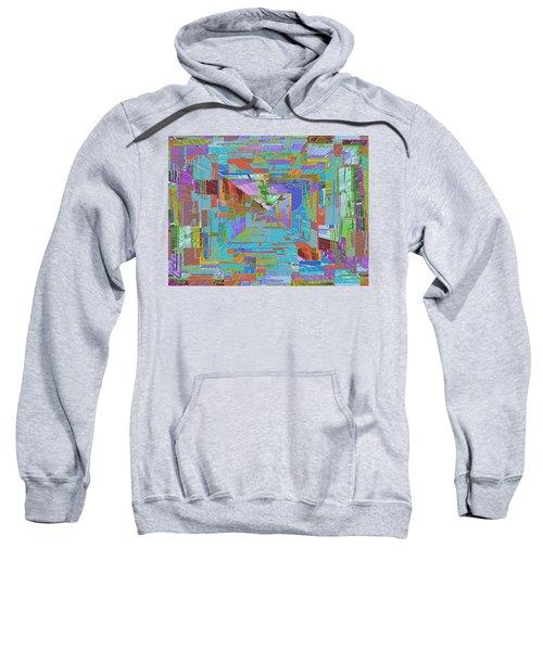 Topographic Albatross Sweatshirt by Tim Allen