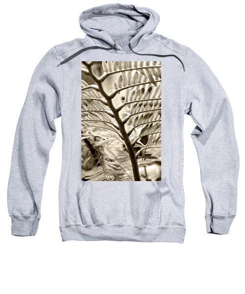 Translucidity Sweatshirt