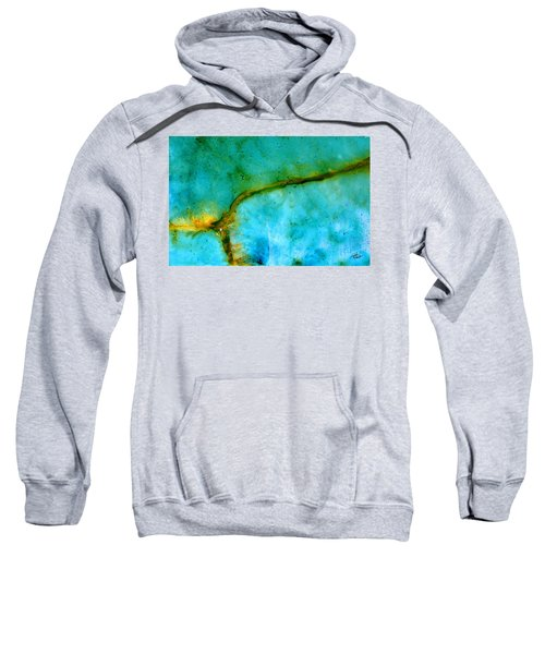 Transport Sweatshirt