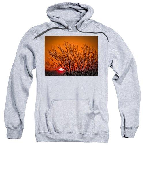 Tree Silhouetted By Irish Sunrise Sweatshirt
