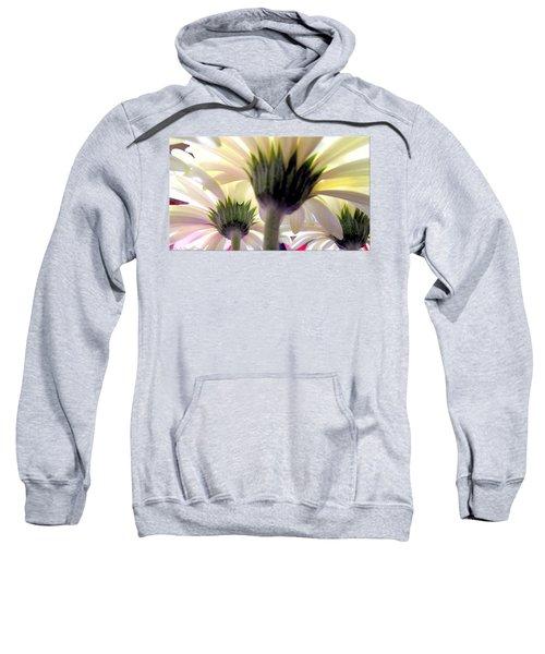 Tribute To Daisies Sweatshirt