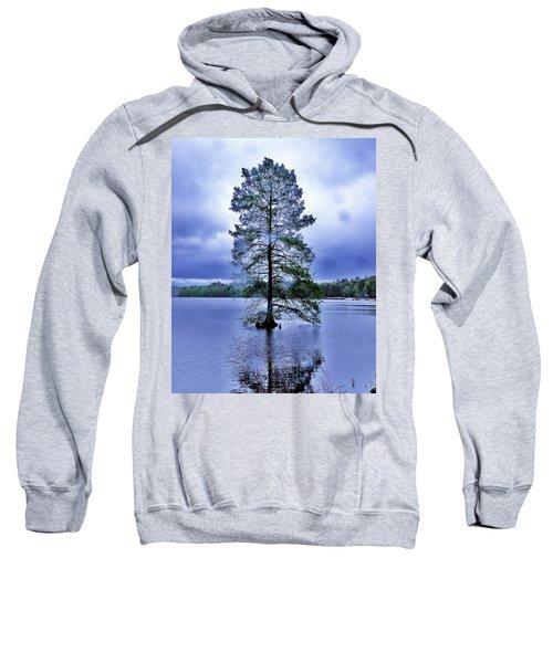 The Healing Tree - Trap Pond State Park Delaware Sweatshirt