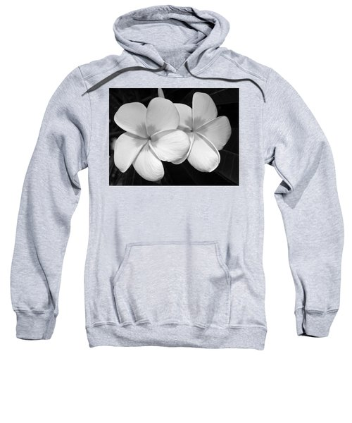 Tropical Beauty Sweatshirt