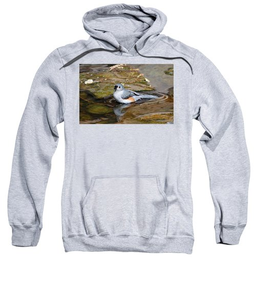 Tufted Titmouse In Pond Sweatshirt by Sandy Keeton