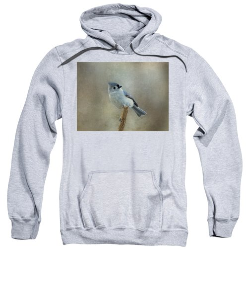 Tufted Titmouse Watching Sweatshirt