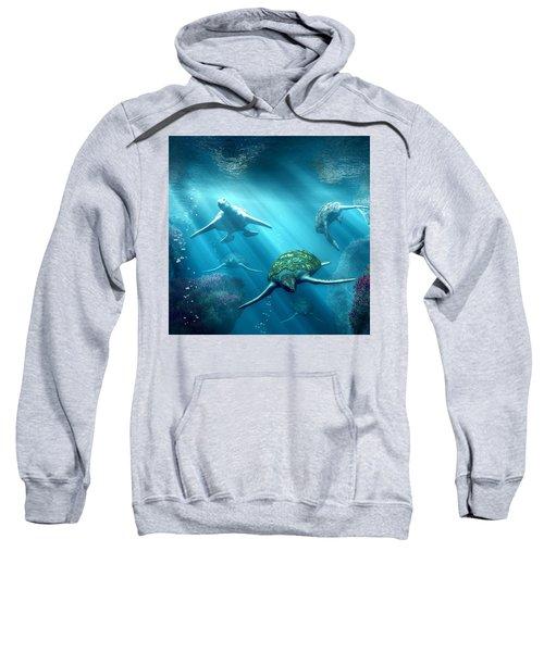 Turtle Alley Sweatshirt