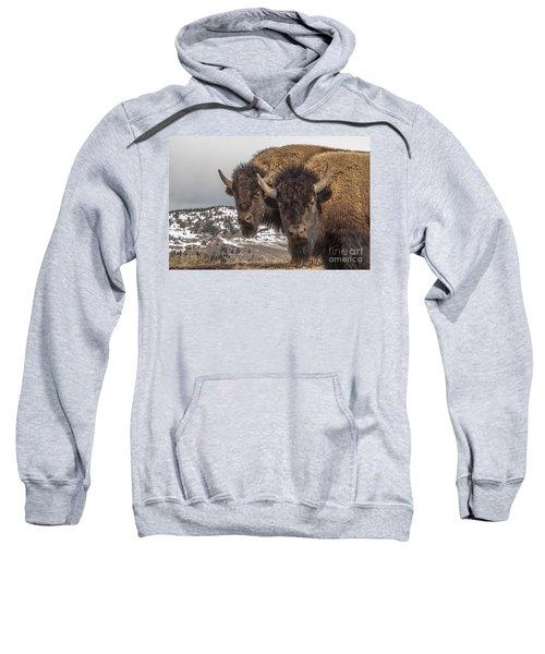 Two Bison Sweatshirt