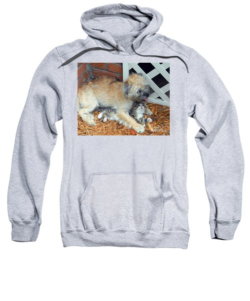 Two Buddies II Sweatshirt