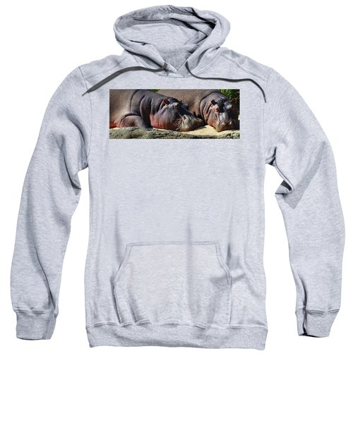 Two Hippos Sleeping On Riverbank Sweatshirt by Johan Swanepoel