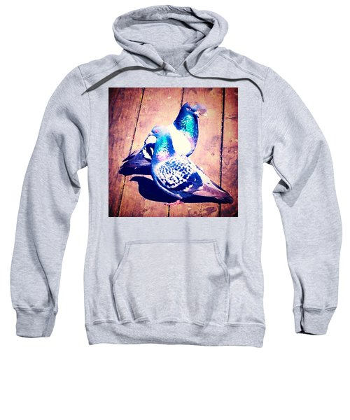 Two Pigeons And A Ghost Sweatshirt