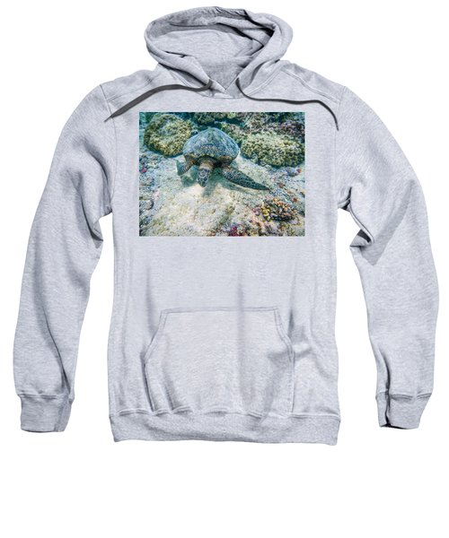 Swimming Turtle Sweatshirt