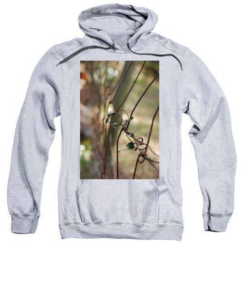 Vine On Rusted Fence Sweatshirt