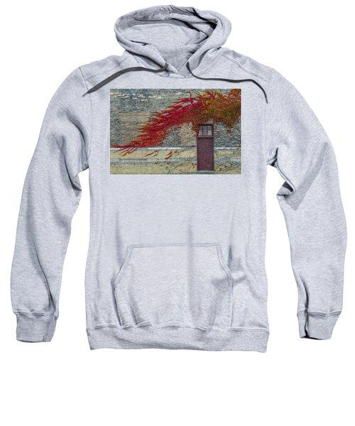 Vine Over Door Sweatshirt