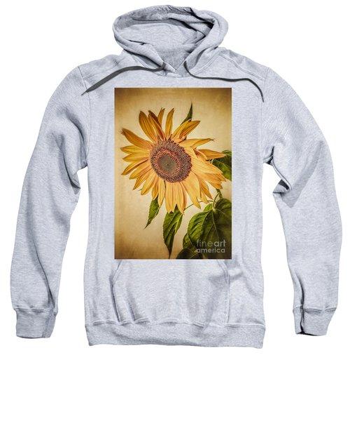 Vintage Sunflower Sweatshirt