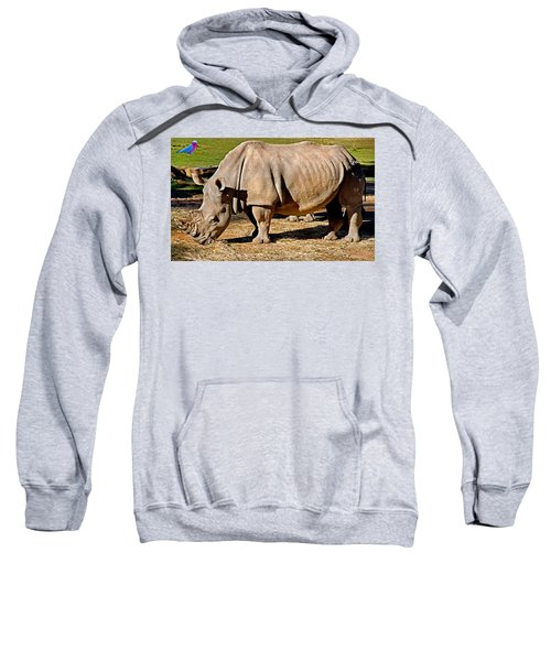 Vip Cockatoo Visitor Gets Closer Look Sweatshirt by Miroslava Jurcik