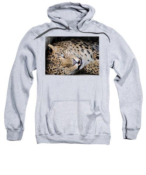 Voodoo The Leopard Sweatshirt