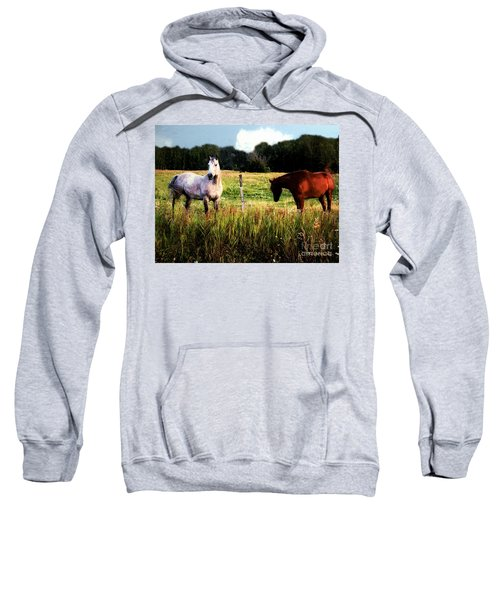 Waiting For Apples Sweatshirt