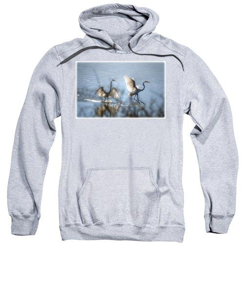 Water Ballet  Sweatshirt
