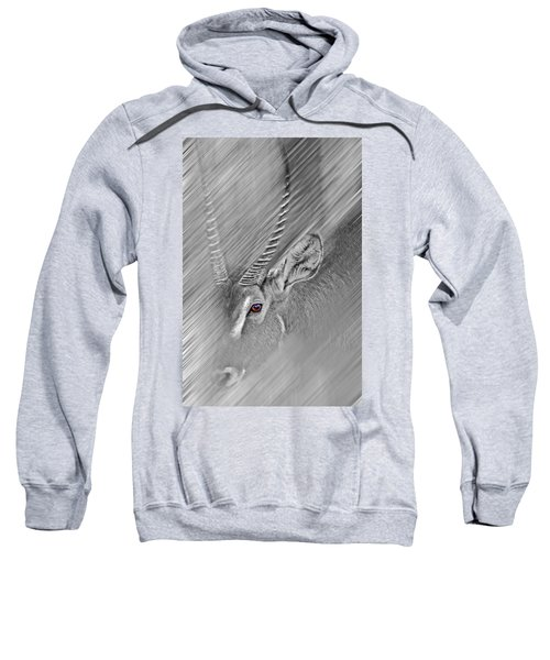 Waterbuck Sweatshirt by Miroslava Jurcik