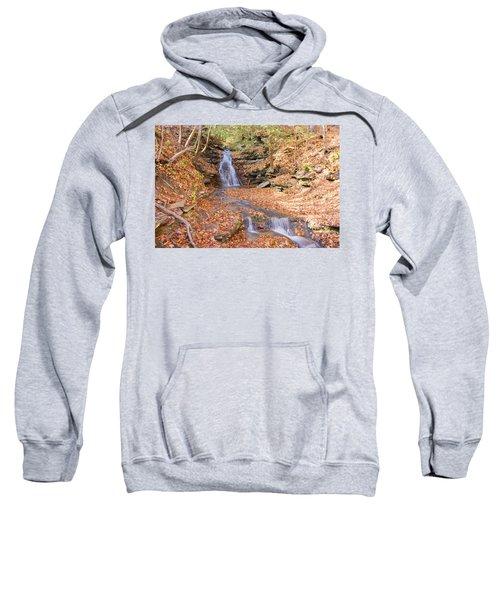 Waterfall In The Fall Sweatshirt