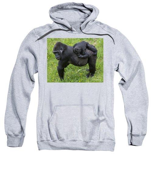 Western Lowland Gorilla 2 Sweatshirt