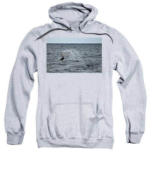 Sweatshirt featuring the photograph Whale Of A Time by Miroslava Jurcik