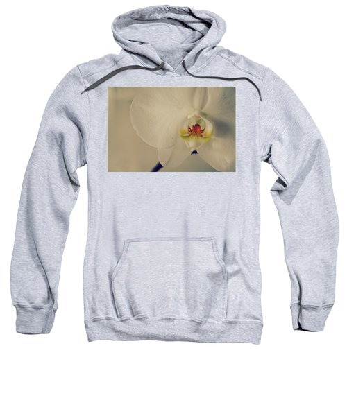 What Love Felt Like Sweatshirt