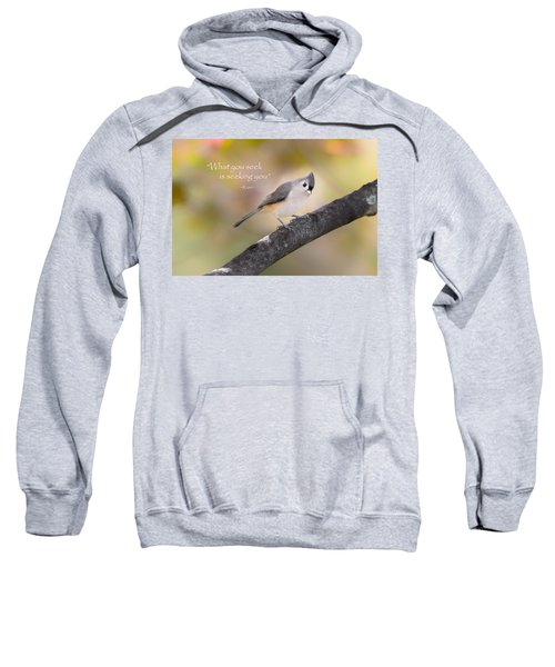 What You Seek Sweatshirt by Bill Wakeley
