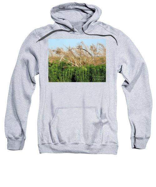 Wheel Forgotten Sweatshirt