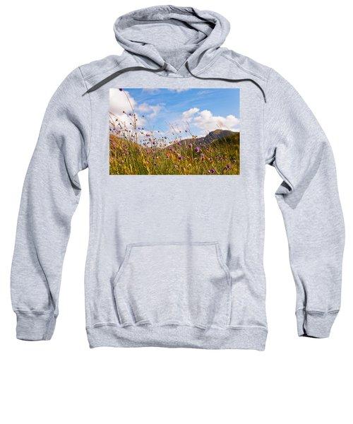 When The Sun Is Shining Everything Around Smiling Towards. Scotland Sweatshirt