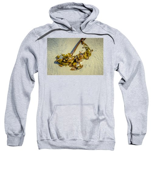 Whipped Up On Shore  Sweatshirt