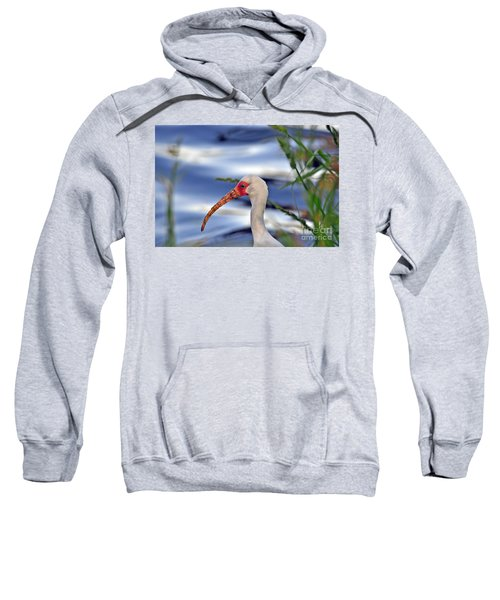 Intriguing Ibis Sweatshirt