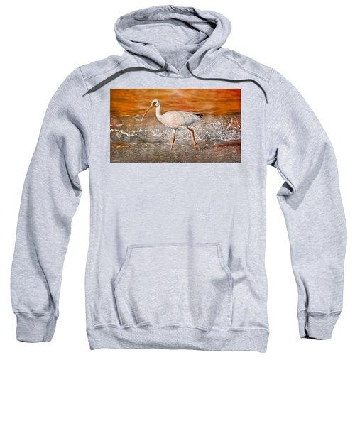 White Ibis Stroll Sweatshirt