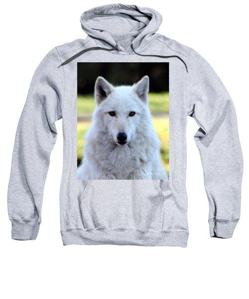 White Wolf Close Up Sweatshirt