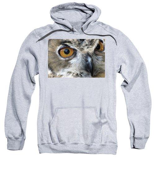 Who Sweatshirt