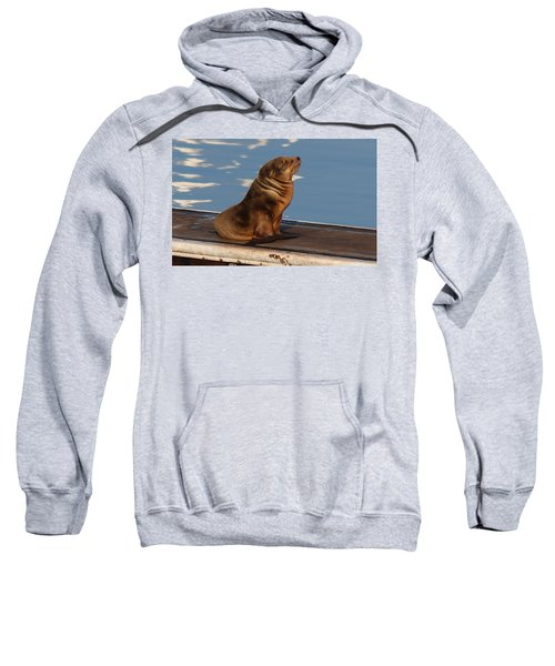 Wild Pup Sun Bathing - 2 Sweatshirt