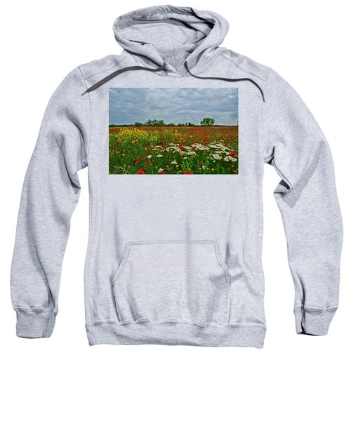 Wild Texas Sweatshirt