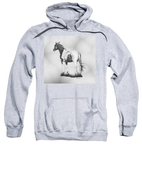 Winds Of Change Sweatshirt