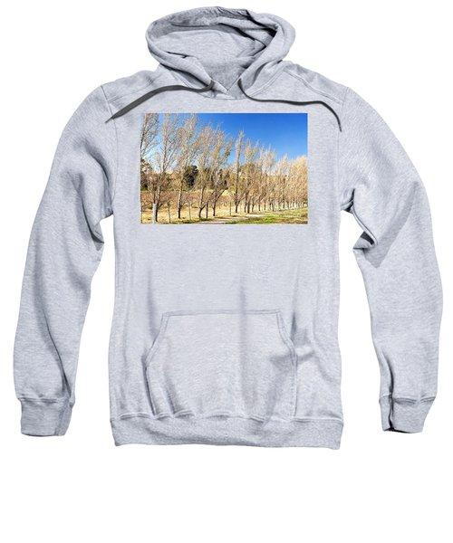 Winery Sweatshirt