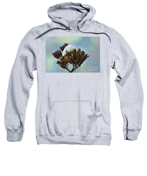 Winter Agave Bloom Sweatshirt