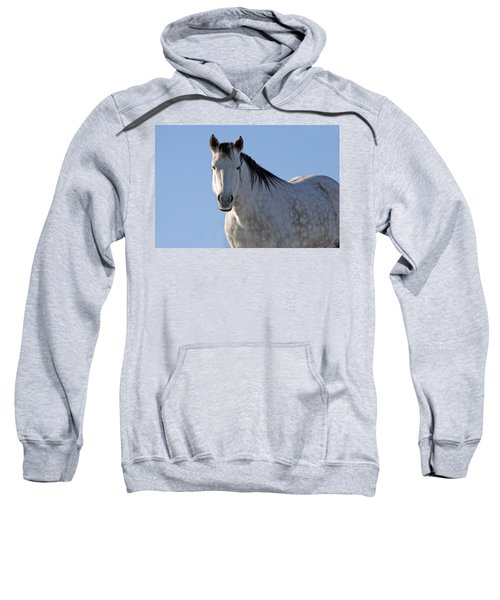 Winter Pony Sweatshirt