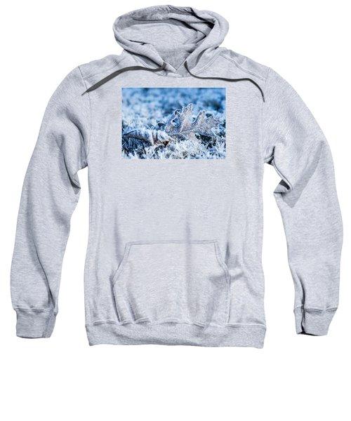 Winter's Icy Grip Sweatshirt