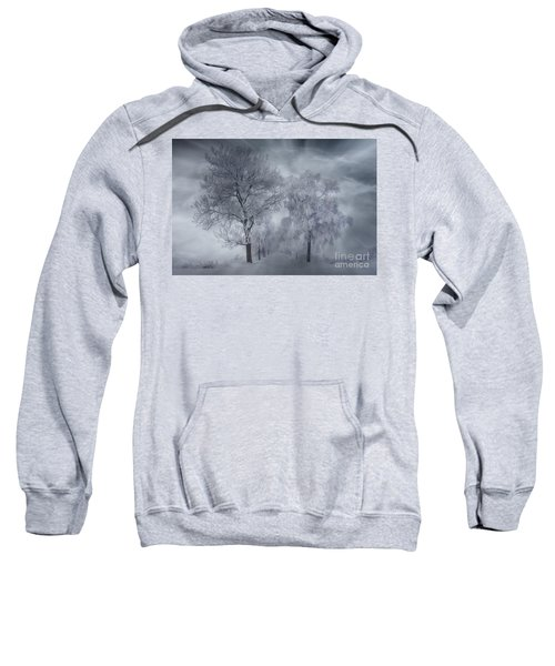 Winter's Magic Sweatshirt